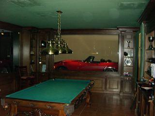 Garage Lotus!! 108240d1231967256-garage-pics-rec-room-display-garage3