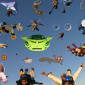 Skydiving animals