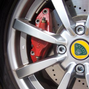 Painted Brake Caliper