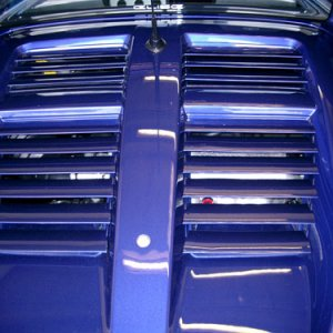 Painted Blue Grills, Engine