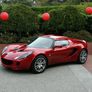 Canyon Red 2008 Elise Sc (and Other Reds)