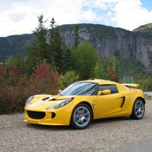 11178-lotus Barriere 3